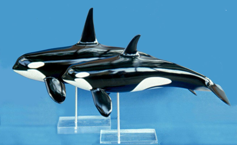 modelli in scala di orche museo oceanografico monaco montecarlo france artescienza