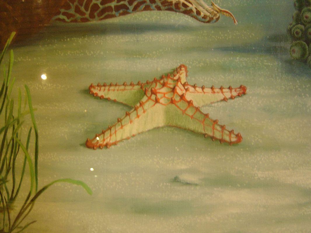 quadro a olio su tela museo oceanografico monaco montecarlo france artescienza
